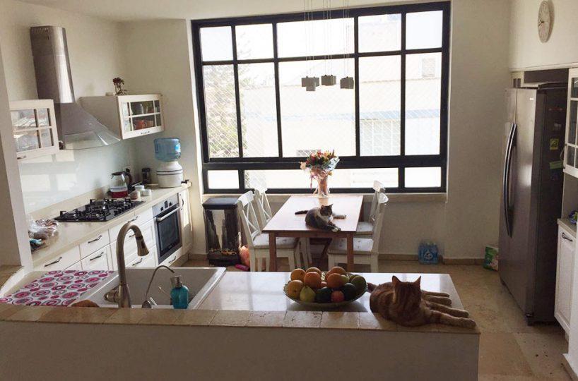 דירת גג יפיפיה + היתר בנייה בתוקף